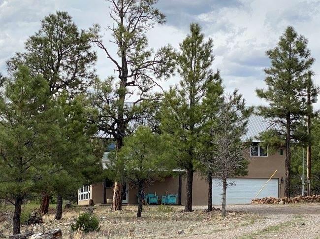 72A Canyon Dr Loop - Photo 1