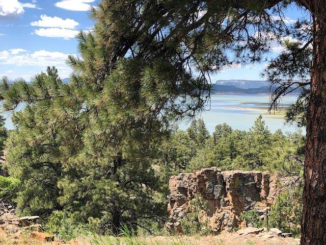 72A Canyon Dr Loop, Chama, NM 87520 (MLS #201901412) :: The Desmond Hamilton Group