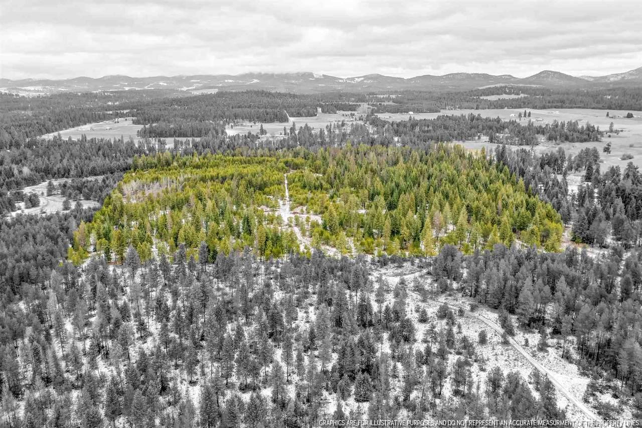 NKA Vacant Land/ Elk Chattaroy Rd - Photo 1