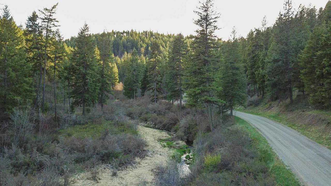 NKA Tamarack Canyon Rd - Photo 1