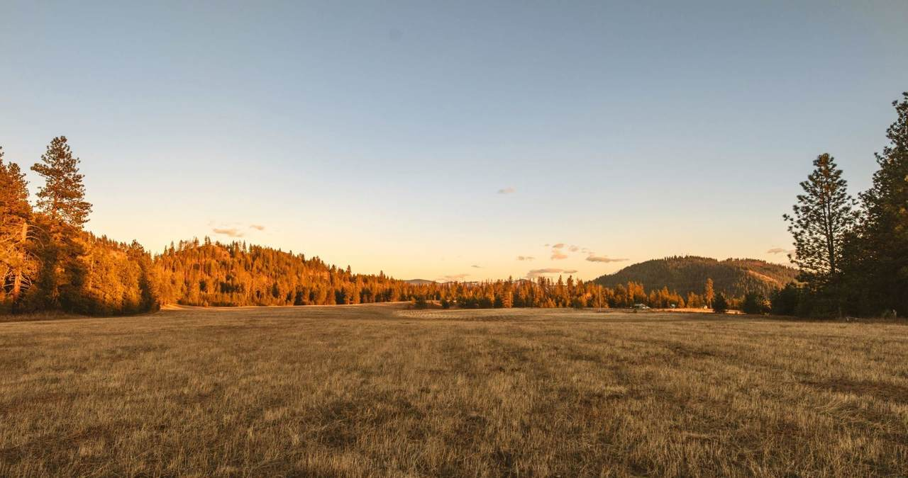000 Bead Lake Rd - Photo 1