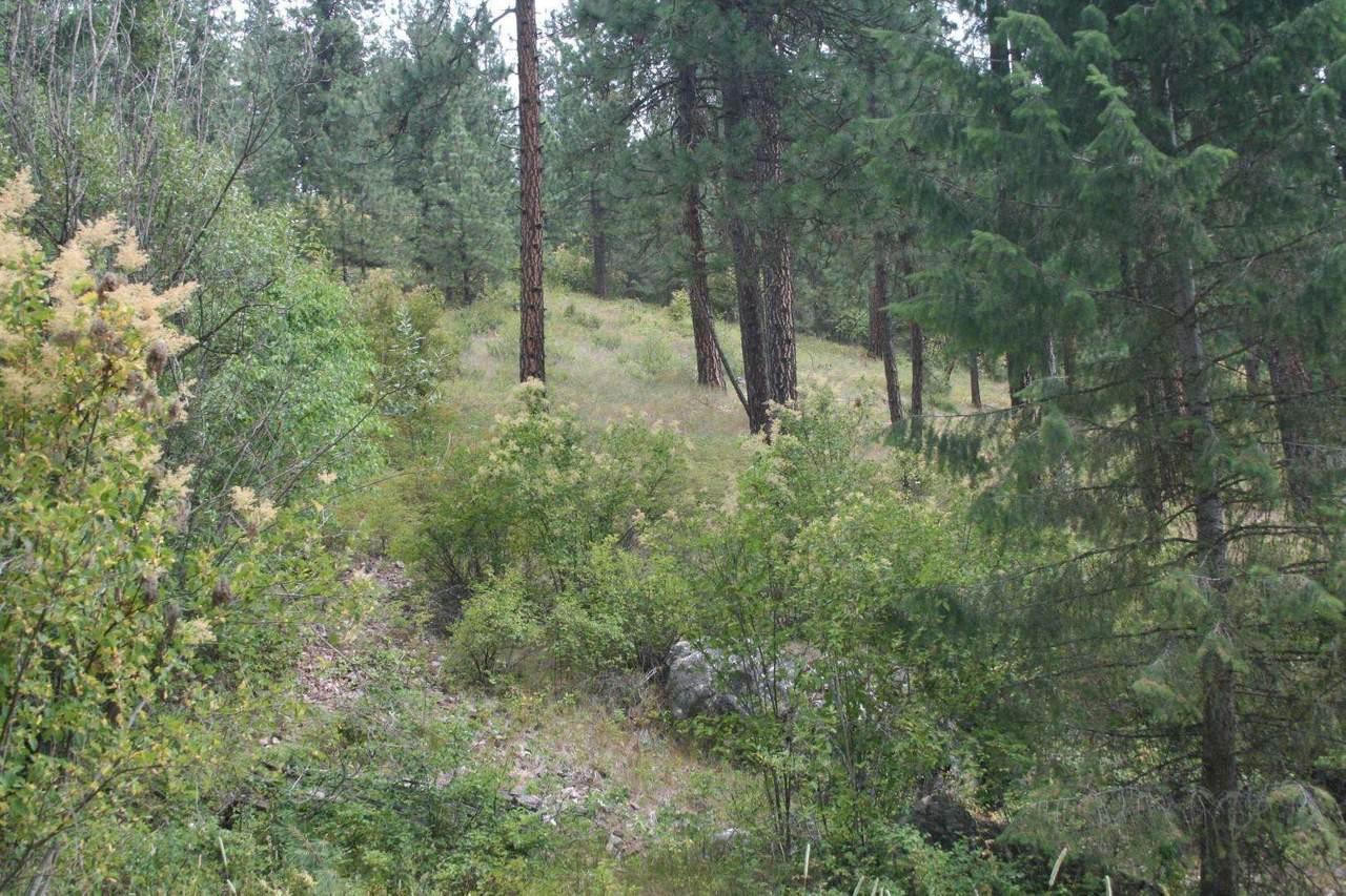 3938 Canyon Springs Way - Photo 1