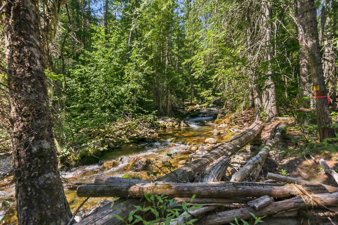 NKA Trout Creek Rd - Photo 1