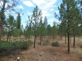 Lot 107 Old Kettle Rd - Photo 13