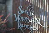 XX Saddle Mountain Way - Photo 2