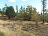 LOT 202 Old Kettle Rd - Photo 9