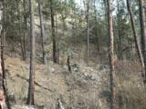 001 Cummings Canyon Way - Photo 18