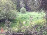 000 Muehle Rd - Photo 4