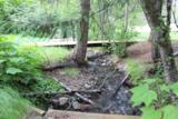 3049 Leslie Creek Rd - Photo 14