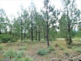 Lot 108 Old Kettle Rd - Photo 2