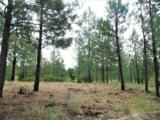 Lot 108 Old Kettle Rd - Photo 4