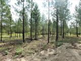 Lot 108 Old Kettle Rd - Photo 5