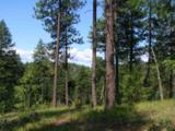 42854 Mt Moriah Way - Photo 10