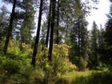 42854 Mt Moriah Way - Photo 9