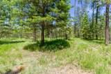 3791 Meadowlark Way - Photo 3