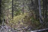 NNA Coyote Trl - Photo 10