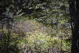 NNA Coyote Trl - Photo 18