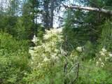 125 Calispel Trail Loop - Photo 15
