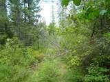 125 Calispel Trail Loop - Photo 18