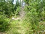 125 Calispel Trail Loop - Photo 6