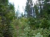 125 Calispel Trail Loop - Photo 7