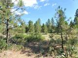 Lot 111 Old Kettle Rd - Photo 10