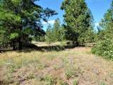 Lot 111 Old Kettle Rd - Photo 7