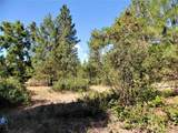 Lot 111 Old Kettle Rd - Photo 8