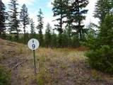 11418 Elk Run Ln - Photo 1