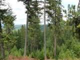 11418 Elk Run Ln - Photo 2