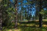 15915 Silver Lake Rd - Photo 49