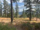 Lot 20 Palmer Loop - Photo 1