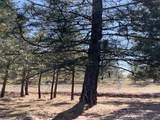 34825 Partridge Ln - Photo 7