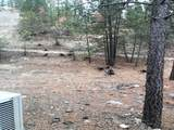 31100 Ruffed Grouse Dr - Photo 22