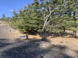 31273 Ruffed Grouse Dr - Photo 1