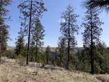 31273 Ruffed Grouse Dr - Photo 10