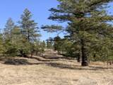 31273 Ruffed Grouse Dr - Photo 14
