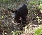 4154 U Deer Creek Rd - Photo 8
