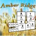 103 Amber Ridge Rd - Photo 15