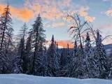 28600 Mt Spokane Park Dr - Photo 9