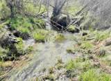 xxxx Deer Creek Rd - Photo 10