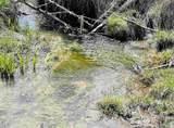 xxxx Deer Creek Rd - Photo 12