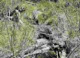 xxxx Deer Creek Rd - Photo 14