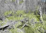 xxxx Deer Creek Rd - Photo 18