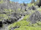 xxxx Deer Creek Rd - Photo 2