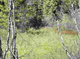 xxxx Deer Creek Rd - Photo 22