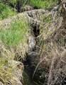 xxxx Deer Creek Rd - Photo 45