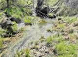 xxxx Deer Creek Rd - Photo 5