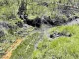 xxxx Deer Creek Rd - Photo 6