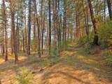 000 Lot 12 Woods Ln - Photo 11